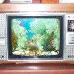 TV reborn as Fish Tank, Vientiane, Laos